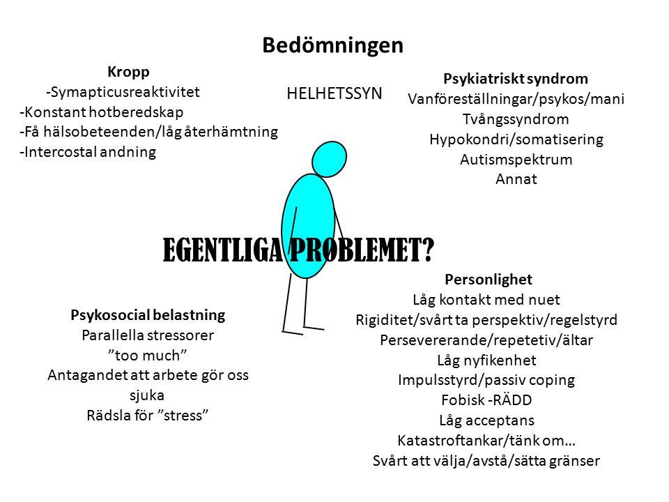 Bedömningen HELHETSSYN Psykiatriskt syndrom Vanföreställningar/psykos/mani Tvångssyndrom Hypokondri/somatisering Autismspektrum Annat Kropp -Symapticusreaktivitet -Konstant hotberedskap -Få hälsobeteenden/låg återhämtning -Intercostal andning Psykosocial belastning Parallella stressorer too much Antagandet att arbete gör oss sjuka Rädsla för stress Personlighet Låg kontakt med nuet Rigiditet/svårt ta perspektiv/regelstyrd Persevererande/repetetiv/ältar Låg nyfikenhet Impulsstyrd/passiv coping Fobisk -RÄDD Låg acceptans Katastroftankar/tänk om… Svårt att välja/avstå/sätta gränser EGENTLIGA PROBLEMET?