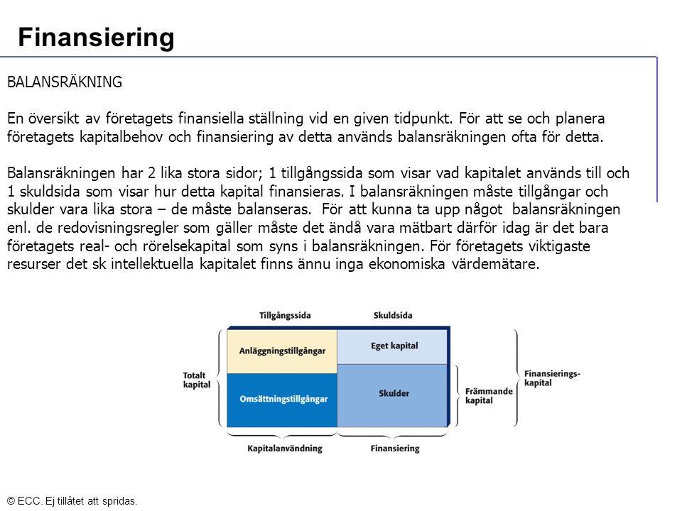 Finansiering BALANSRÄKNING En översikt av företagets finansiella ställning vid en given tidpunkt.