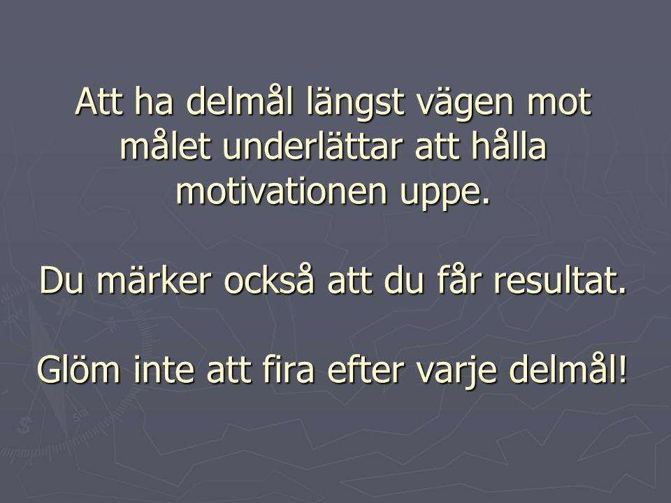 Att ha delmål längst vägen mot målet underlättar att hålla motivationen uppe.