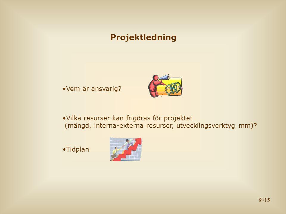 9 Projektledning Vem är ansvarig.