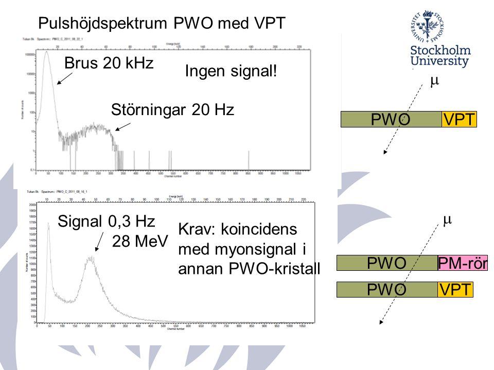 PWOVPT  PWOVPT  PWOPM-rör Krav: koincidens med myonsignal i annan PWO-kristall Signal 0,3 Hz 28 MeV Pulshöjdspektrum PWO med VPT Ingen signal.