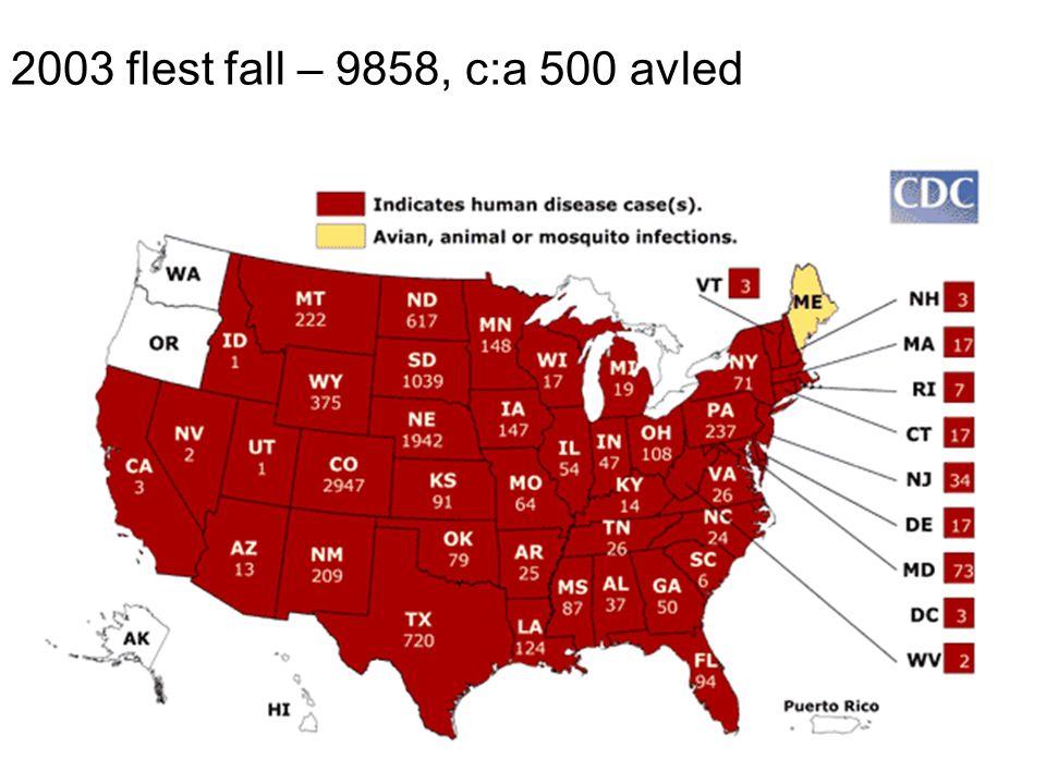 2003 flest fall – 9858, c:a 500 avled