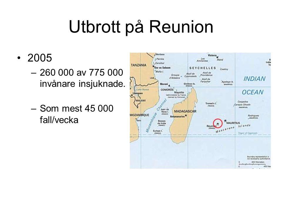 Utbrott på Reunion 2005 –260 000 av 775 000 invånare insjuknade. –Som mest 45 000 fall/vecka