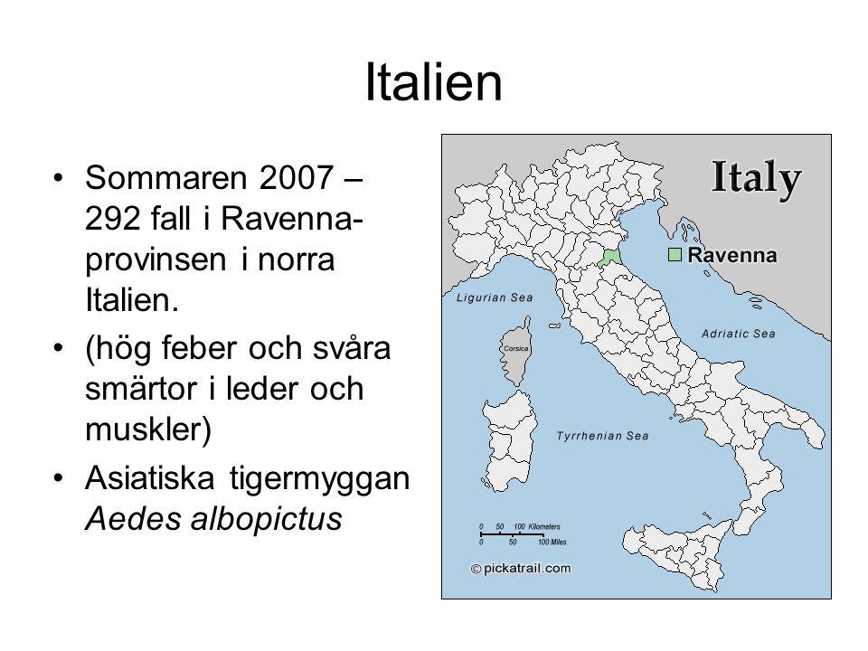 Italien Sommaren 2007 – 292 fall i Ravenna- provinsen i norra Italien.