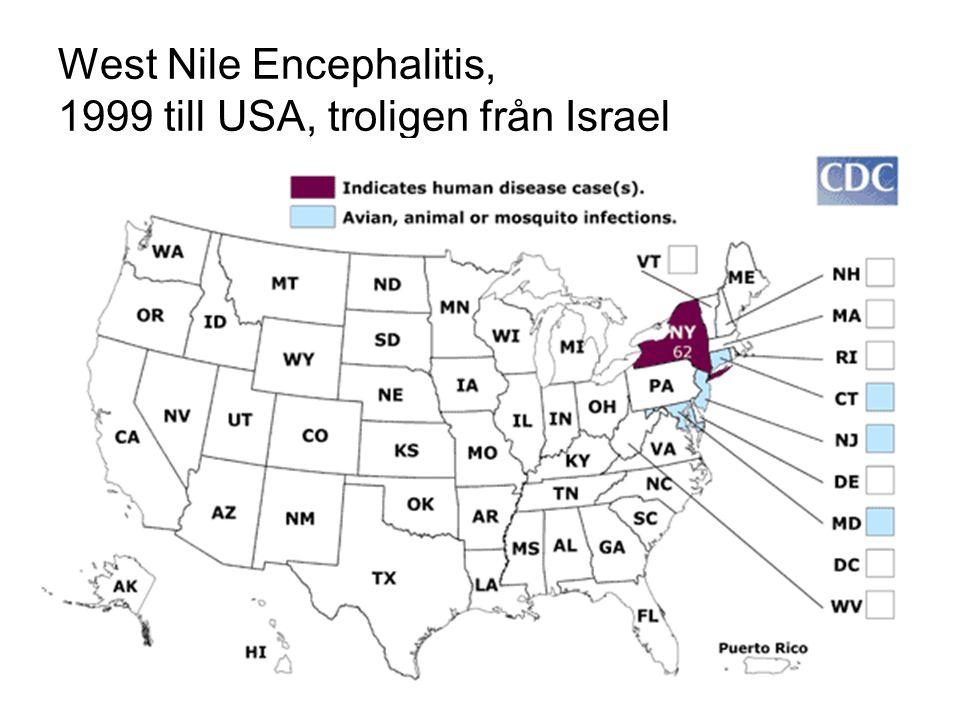 West Nile kan spridas via blodtransfusion Viremisk innan symtomdebut 2003 upptäcktes 900 fall i USA vid screening Svenska regler: Ej ge blod inom 1 månad efter USA-resa