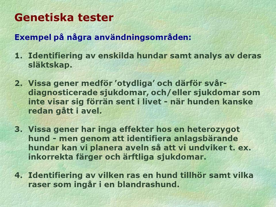 Genetiska tester Exempel på några användningsområden: 1.Identifiering av enskilda hundar samt analys av deras släktskap.