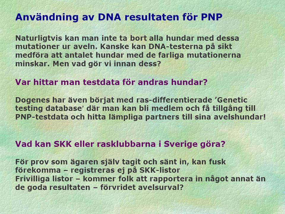 Användning av DNA resultaten för PNP Naturligtvis kan man inte ta bort alla hundar med dessa mutationer ur aveln. Kanske kan DNA-testerna på sikt medf