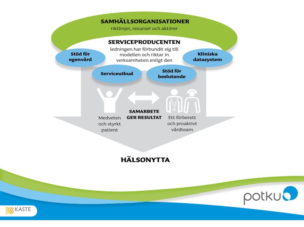 Hälso- och vårdplanens innehåll Patientens behov Vårdens målsättning Genomförande av vården och metoderna Stöd, uppföljning och utvärdering Ansvarsperson för planen Tilläggsuppgifter Diagnoser Medicinering
