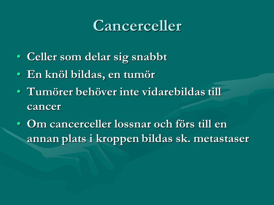 Cancerceller Celler som delar sig snabbtCeller som delar sig snabbt En knöl bildas, en tumörEn knöl bildas, en tumör Tumörer behöver inte vidarebildas till cancerTumörer behöver inte vidarebildas till cancer Om cancerceller lossnar och förs till en annan plats i kroppen bildas sk.