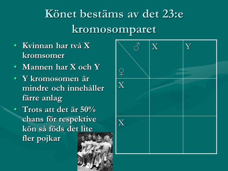 Könsbundet arv Vissa sjukdomar t.ex.