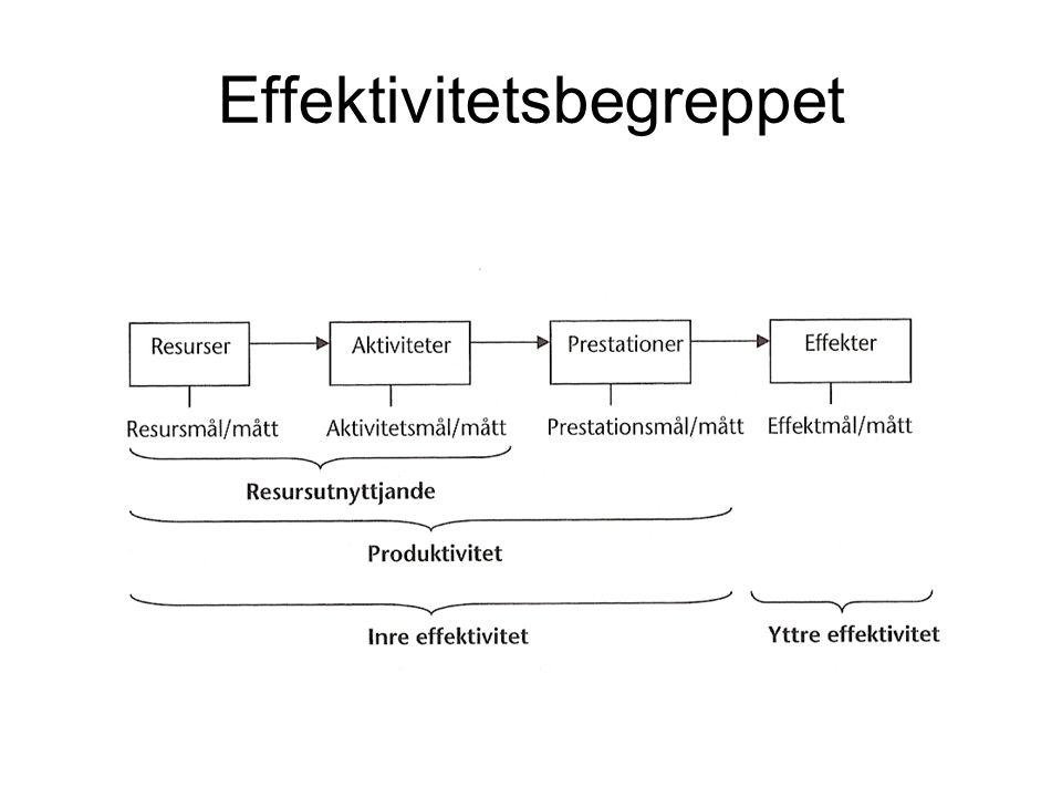 Effektivitetsbegreppet