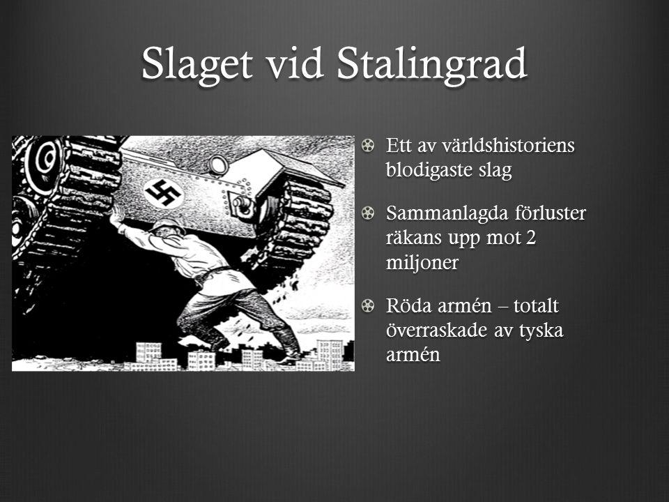 Slaget vid Stalingrad Ett av världshistoriens blodigaste slag Sammanlagda förluster räkans upp mot 2 miljoner Röda armén – totalt överraskade av tyska armén