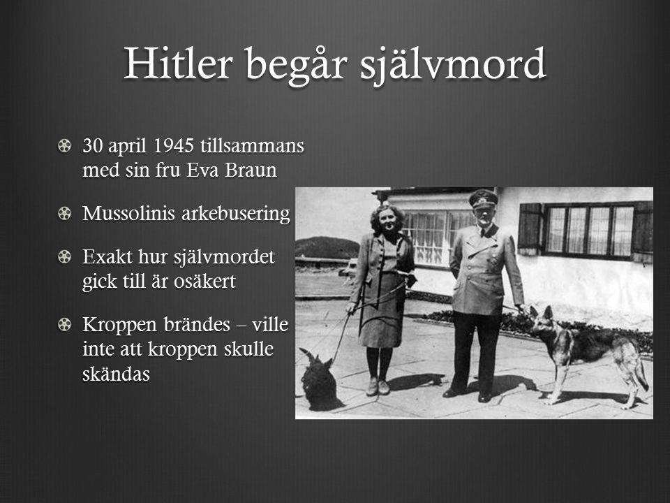 Hitler begår självmord 30 april 1945 tillsammans med sin fru Eva Braun Mussolinis arkebusering Exakt hur självmordet gick till är osäkert Kroppen brändes – ville inte att kroppen skulle skändas