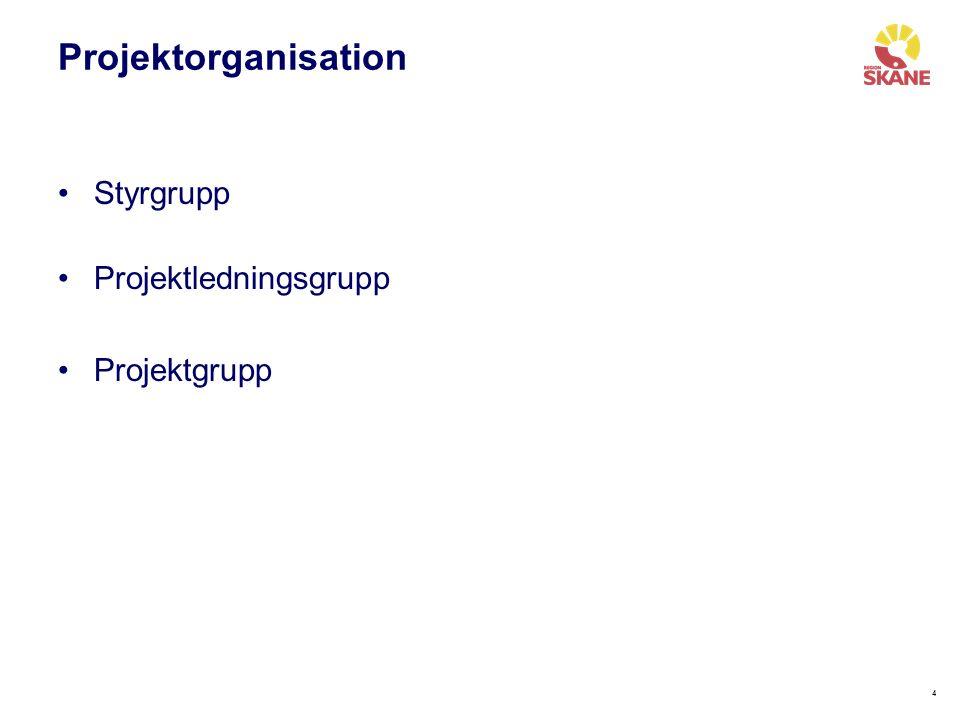 44 Projektorganisation Styrgrupp Projektledningsgrupp Projektgrupp