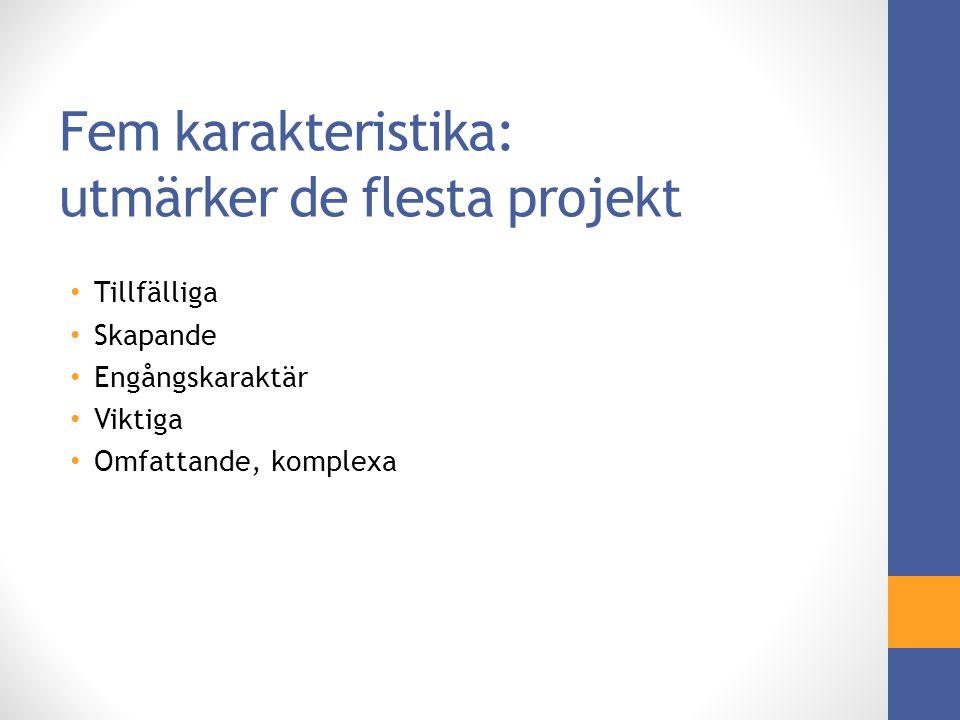Hur hänger projektledning och samhällsentreprenörskap ihop.