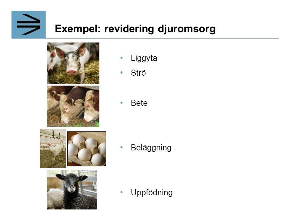 Exempel: revidering djuromsorg Liggyta Strö Bete Beläggning Uppfödning