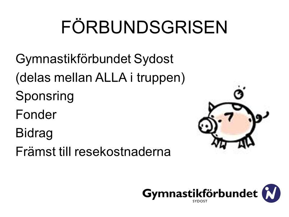 FÖRBUNDSGRISEN Gymnastikförbundet Sydost (delas mellan ALLA i truppen) Sponsring Fonder Bidrag Främst till resekostnaderna