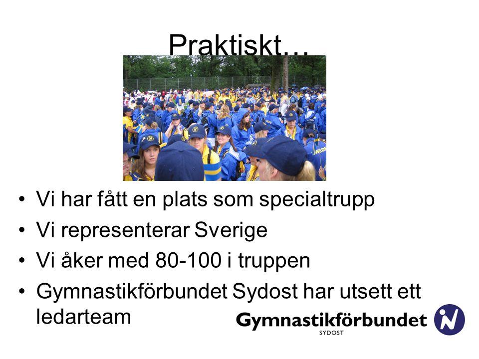 Praktiskt… Vi har fått en plats som specialtrupp Vi representerar Sverige Vi åker med 80-100 i truppen Gymnastikförbundet Sydost har utsett ett ledarteam