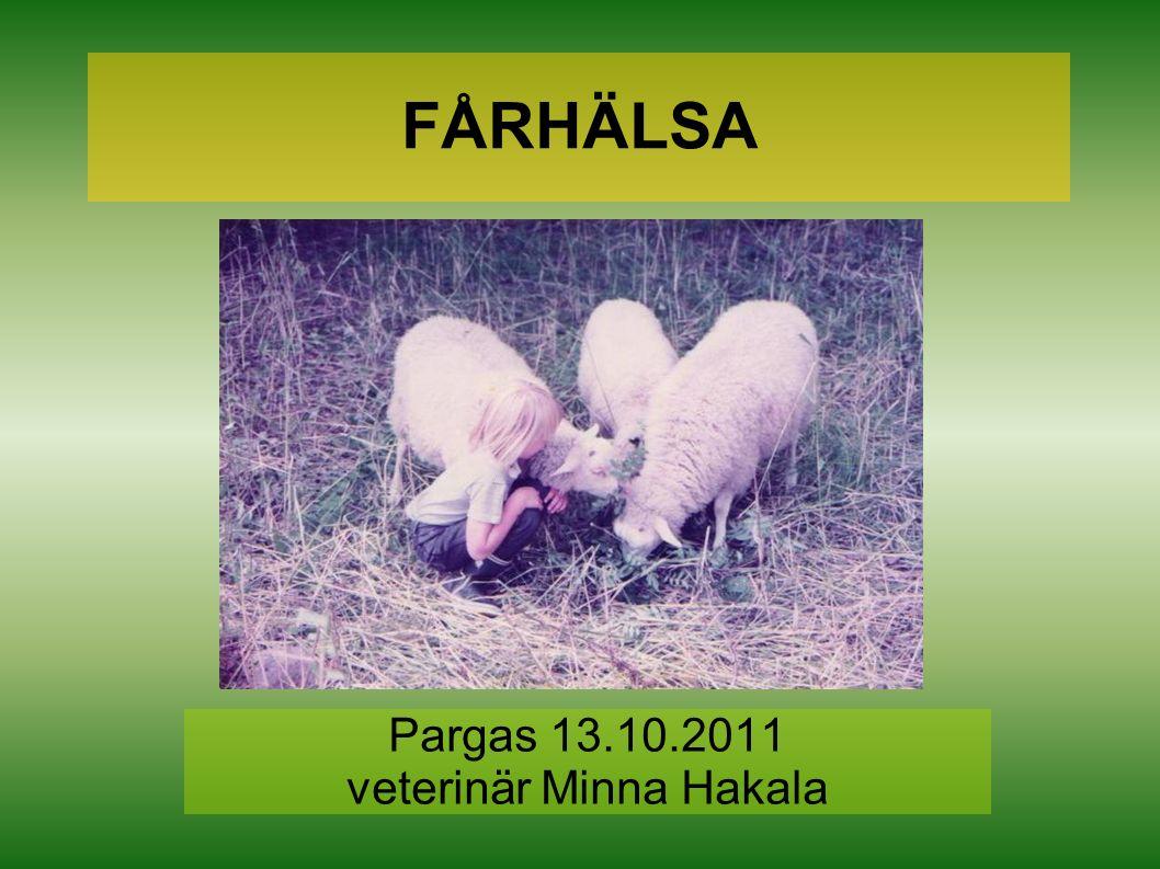 FÅRHÄLSA Pargas 13.10.2011 veterinär Minna Hakala