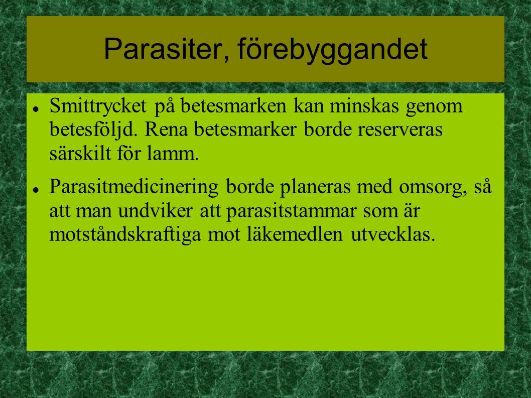 Parasiter, förebyggandet Smittrycket på betesmarken kan minskas genom betesföljd.