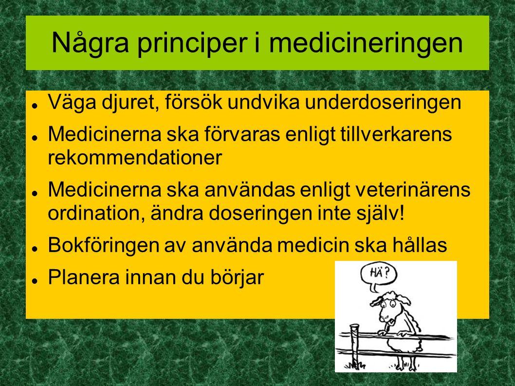 Några principer i medicineringen Väga djuret, försök undvika underdoseringen Medicinerna ska förvaras enligt tillverkarens rekommendationer Medicinerna ska användas enligt veterinärens ordination, ändra doseringen inte själv.