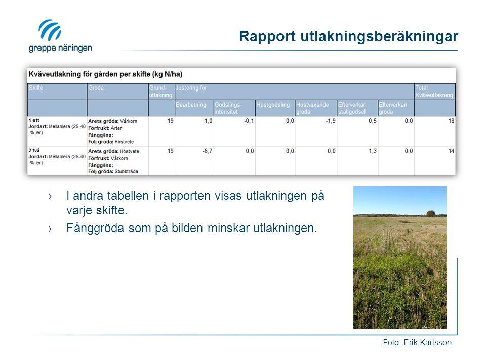 Rapport utlakningsberäkningar ›I andra tabellen i rapporten visas utlakningen på varje skifte.