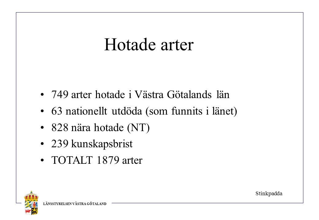 LÄNSSTYRELSEN VÄSTRA GÖTALAND Hotade arter 749 arter hotade i Västra Götalands län 63 nationellt utdöda (som funnits i länet) 828 nära hotade (NT) 239 kunskapsbrist TOTALT 1879 arter Stinkpadda