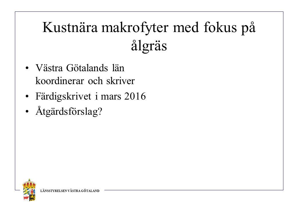 LÄNSSTYRELSEN VÄSTRA GÖTALAND Kustnära makrofyter med fokus på ålgräs Västra Götalands län koordinerar och skriver Färdigskrivet i mars 2016 Åtgärdsförslag