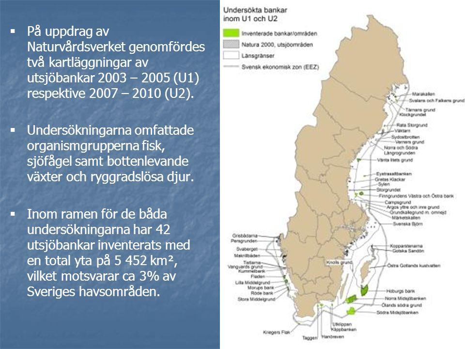   På uppdrag av Naturvårdsverket genomfördes två kartläggningar av utsjöbankar 2003 – 2005 (U1) respektive 2007 – 2010 (U2).