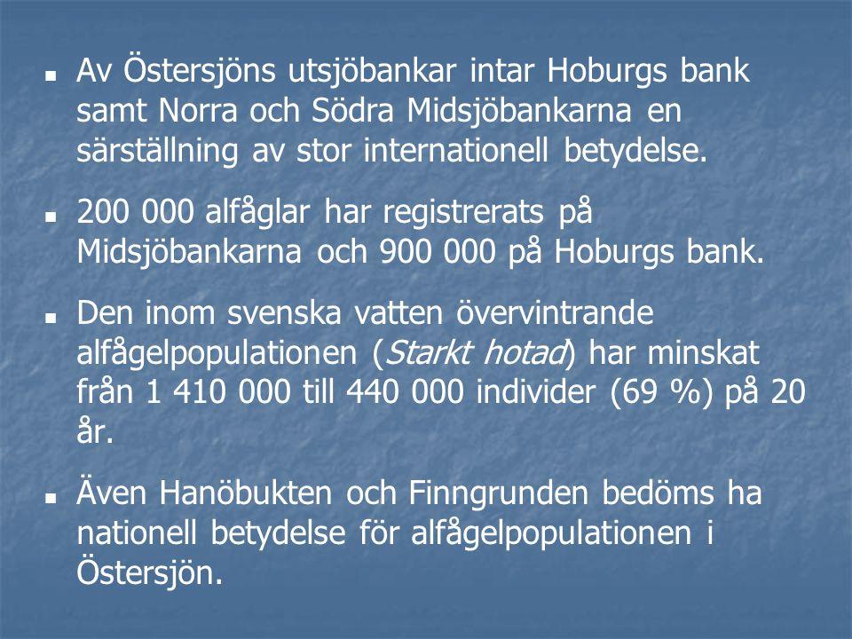 Av Östersjöns utsjöbankar intar Hoburgs bank samt Norra och Södra Midsjöbankarna en särställning av stor internationell betydelse.