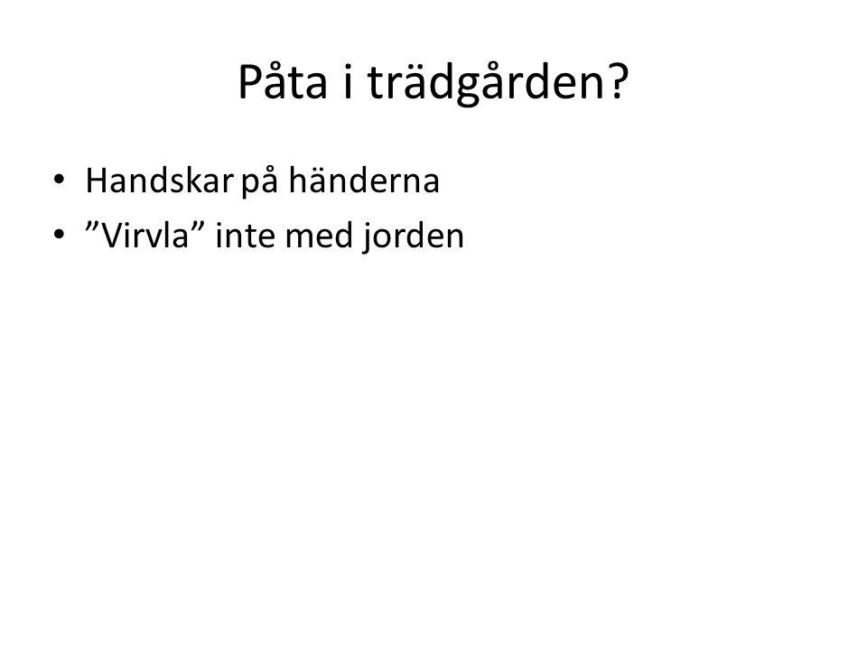 """Påta i trädgården? Handskar på händerna """"Virvla"""" inte med jorden"""