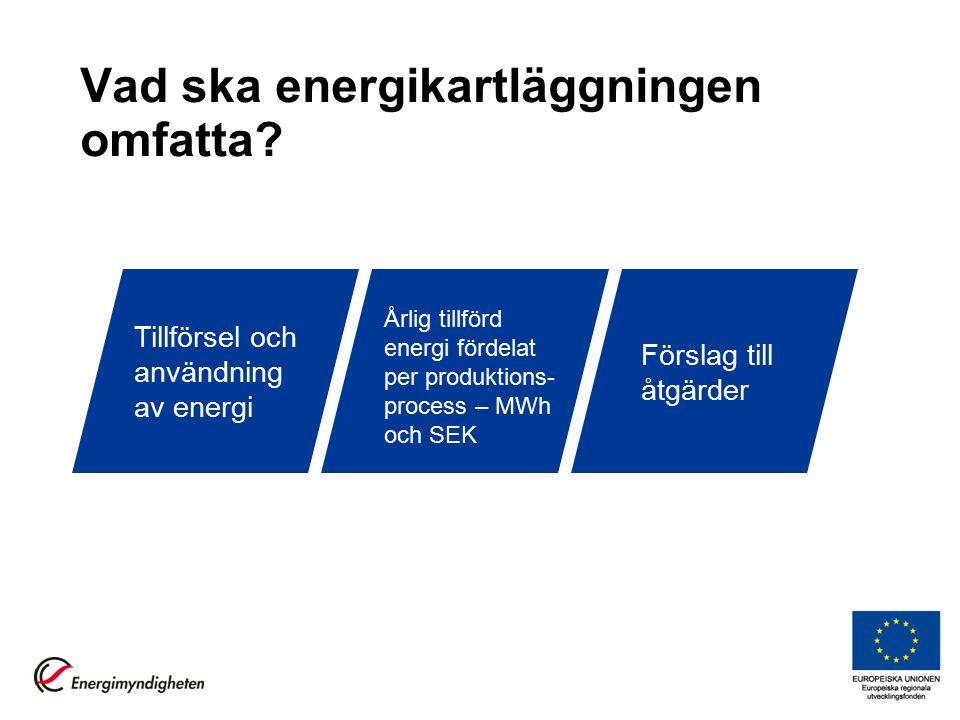 Vad ska energikartläggningen omfatta.