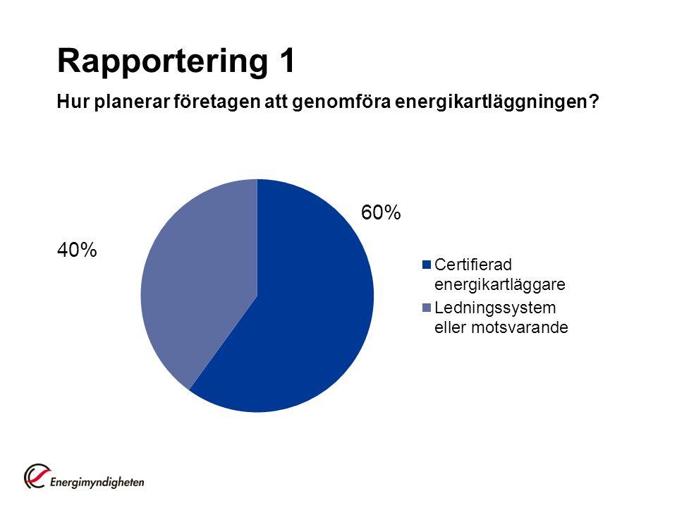 Rapportering 1 Hur planerar företagen att genomföra energikartläggningen 60% 40%