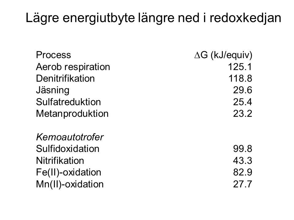 Lägre energiutbyte längre ned i redoxkedjan Process  G (kJ/equiv) Aerob respiration125.1 Denitrifikation118.8 Jäsning29.6 Sulfatreduktion25.4 Metanproduktion23.2 Kemoautotrofer Sulfidoxidation99.8 Nitrifikation43.3 Fe(II)-oxidation82.9 Mn(II)-oxidation27.7