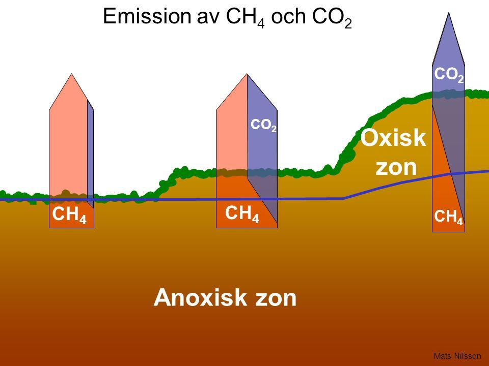 Emission av CH 4 och CO 2 CH 4 CO 2 Anoxisk zon CO 2 Oxisk zon Mats Nilsson