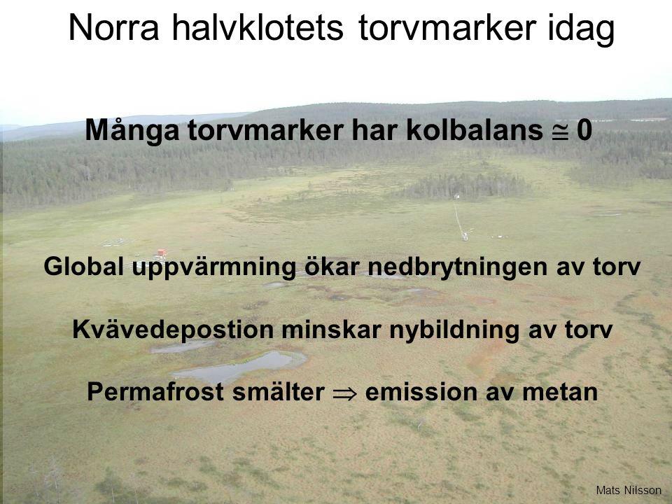 Många torvmarker har kolbalans  0 Global uppvärmning ökar nedbrytningen av torv Kvävedepostion minskar nybildning av torv Permafrost smälter  emission av metan Norra halvklotets torvmarker idag Mats Nilsson
