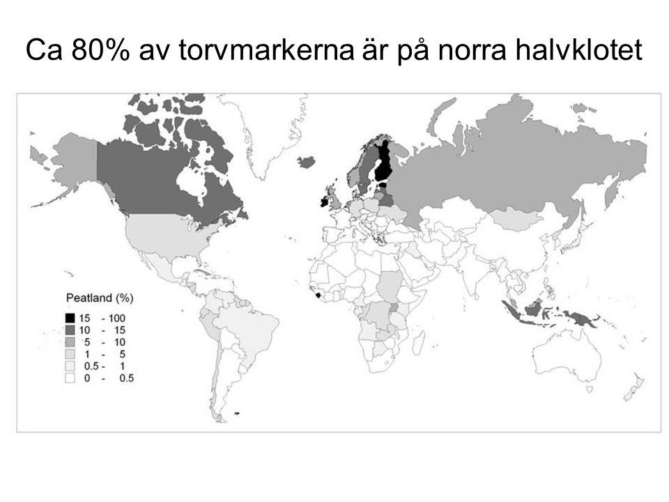 Ca 80% av torvmarkerna är på norra halvklotet