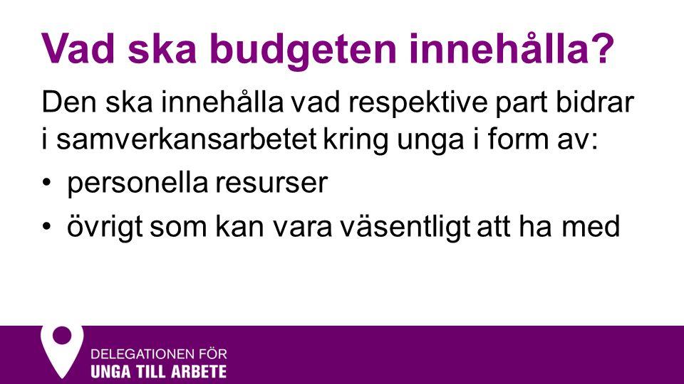 Vad ska budgeten innehålla.