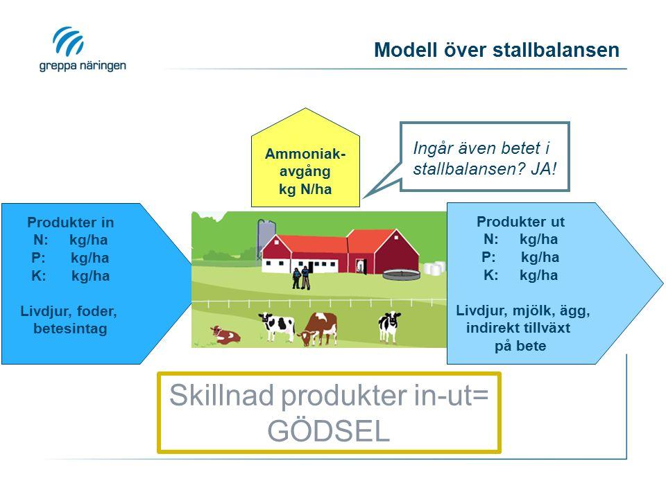 Produkter in N: kg/ha P: kg/ha K: kg/ha Livdjur, foder, betesintag Produkter ut N: kg/ha P: kg/ha K: kg/ha Livdjur, mjölk, ägg, indirekt tillväxt på bete Modell över stallbalansen Skillnad produkter in-ut= GÖDSEL Ingår även betet i stallbalansen.