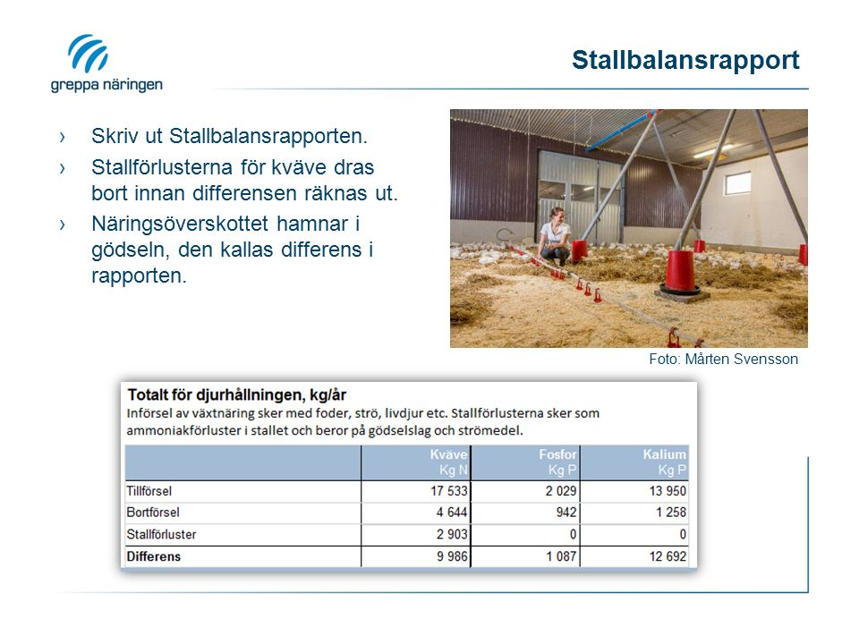 Stallbalansrapport Foto: Mårten Svensson ›Skriv ut Stallbalansrapporten.
