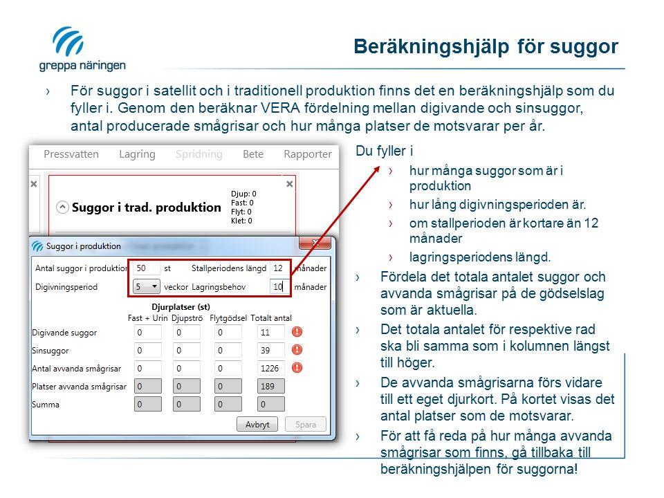 Beräkningshjälp för suggor ›För suggor i satellit och i traditionell produktion finns det en beräkningshjälp som du fyller i.