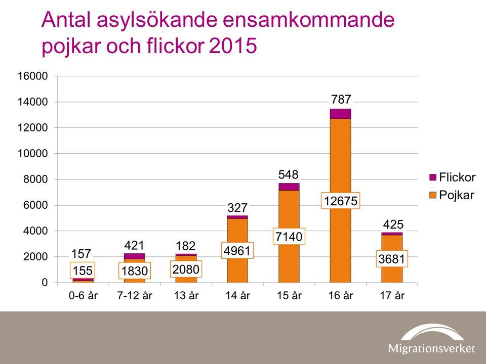 Antal asylsökande ensamkommande pojkar och flickor 2015