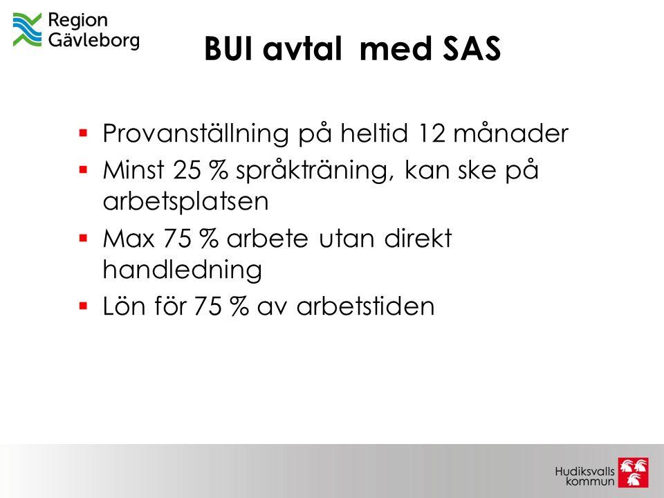 BUI avtal med SAS  Provanställning på heltid 12 månader  Minst 25 % språkträning, kan ske på arbetsplatsen  Max 75 % arbete utan direkt handledning