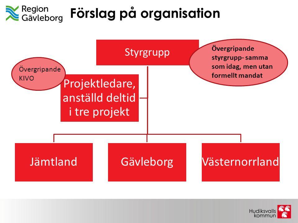 Förslag på organisation Styrgrupp JämtlandGävleborgVästernorrland Projektledare, anställd deltid i tre projekt Övergripande styrgrupp- samma som idag,