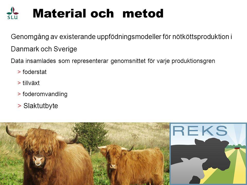 Nötköttsproduktion 4 Självrekryterande köttproduktion:  Extensiv(High Land Cattle)(DK)  Intensiv uppfödning(Charolais, Hereford, Simmenthal)(SE)  Intensiv(Limousine)(DK) Tjurkalvar från mjölkproduktion, framförallt Holstein  Stut(25,4 m.,610 Levande vikt)(SE)  Stut(24 m., 570 kg LV, ekologisk)(DK)  Tjur(19 m., 630 kg LV)(SE)  Ungtjur(11.3 m., 450 kg LV)(DK)  Mellankalv(9.3 m., 380 kg LV)(DK)  Mellankalv(9,0 m., 307 kg LV)(SE)