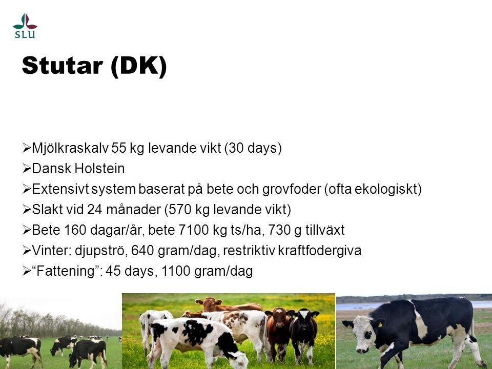 Stutar (DK) 9  Mjölkraskalv 55 kg levande vikt (30 days)  Dansk Holstein  Extensivt system baserat på bete och grovfoder (ofta ekologiskt)  Slakt vid 24 månader (570 kg levande vikt)  Bete 160 dagar/år, bete 7100 kg ts/ha, 730 g tillväxt  Vinter: djupströ, 640 gram/dag, restriktiv kraftfodergiva  Fattening : 45 days, 1100 gram/dag