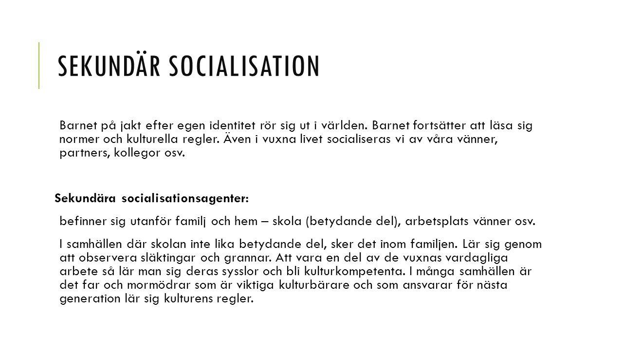 TERTIÄR SOCIALISATION Tertiära socialisationsagent: Media.