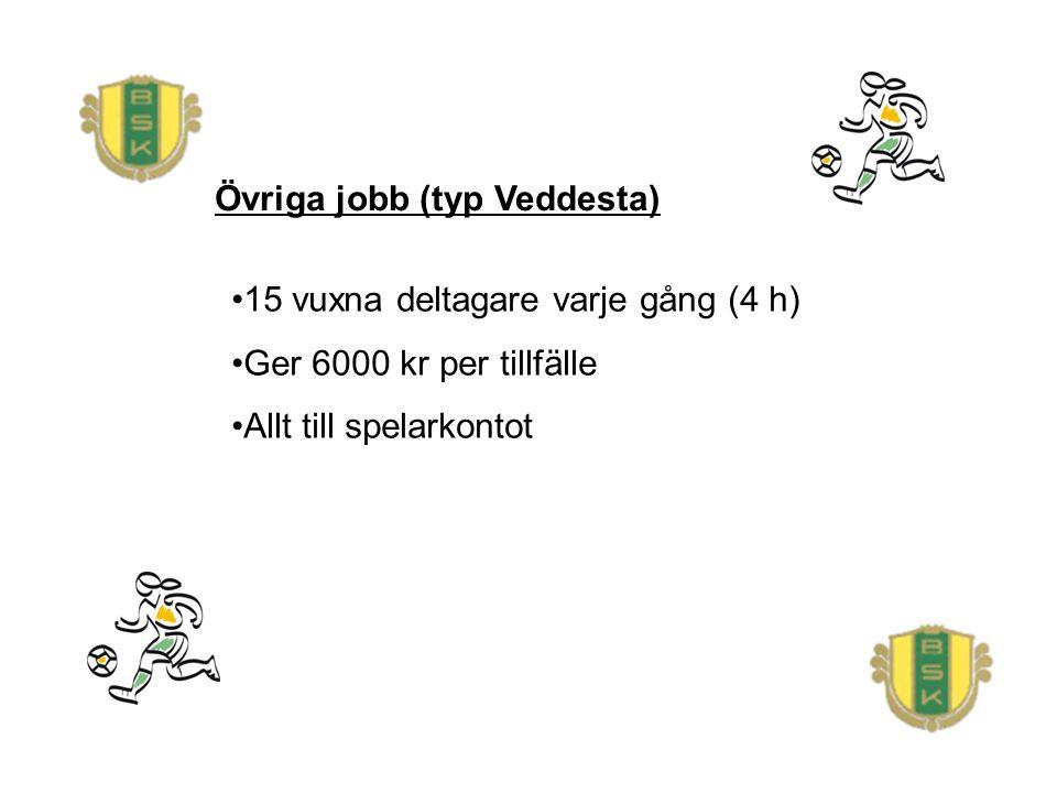 Övriga jobb (typ Veddesta) 15 vuxna deltagare varje gång (4 h) Ger 6000 kr per tillfälle Allt till spelarkontot