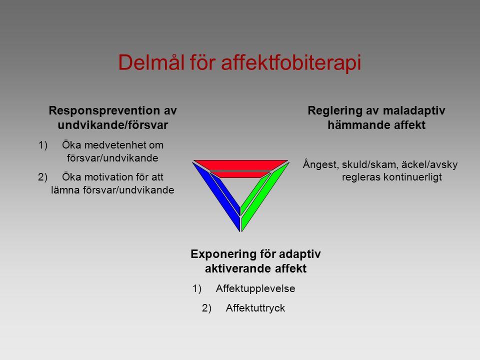 Delmål för affektfobiterapi Responsprevention av undvikande/försvar 1)Öka medvetenhet om försvar/undvikande 2)Öka motivation för att lämna försvar/und