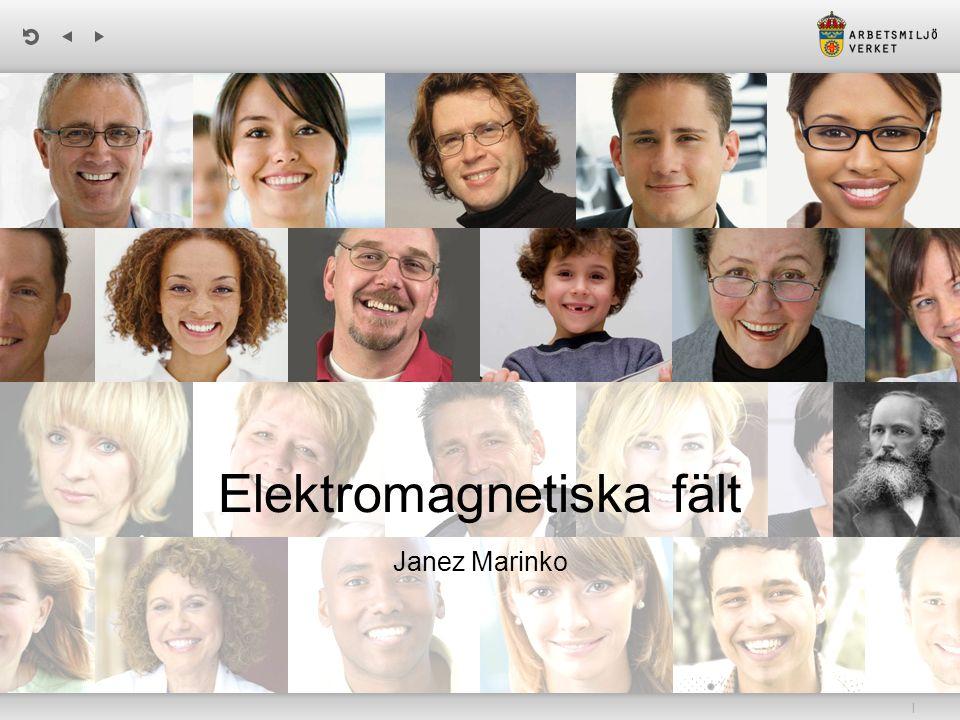 | Elektromagnetiska fält Janez Marinko